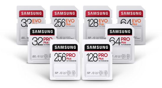 Samsung Full Sized SD Cards All